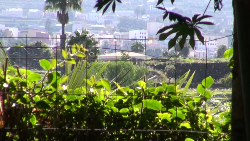 Panorama of tropic city through window in antique stone wall | Shutterstock HD Video #13209536