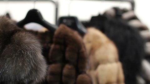 Mink coats hanging in the shop window. Shop mink coats. Chinchilla coats. Sable coats. Sales of fur coats. Winter season. Collection of fur coats.
