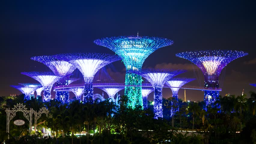Garden By The Bay Night gardensthe bay stock footage video | shutterstock