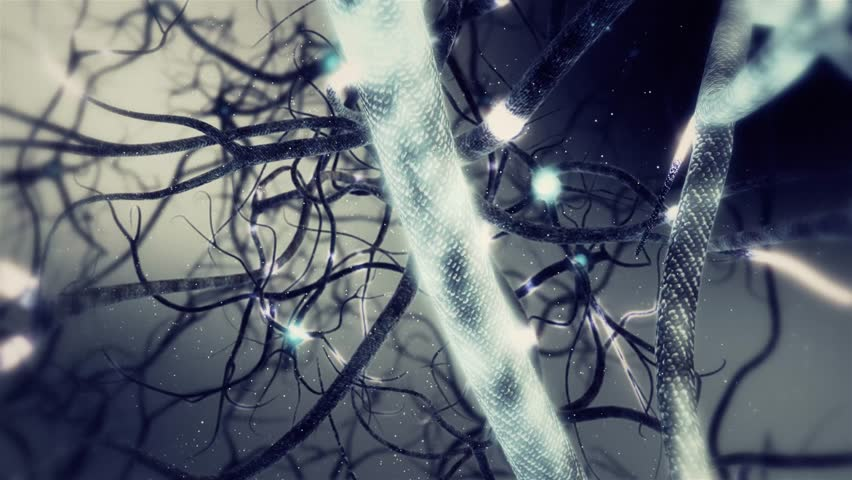 Real Neurone synapse network zoom out animation. Infinite Loop inside the human brain on ultra high definition. #13719566