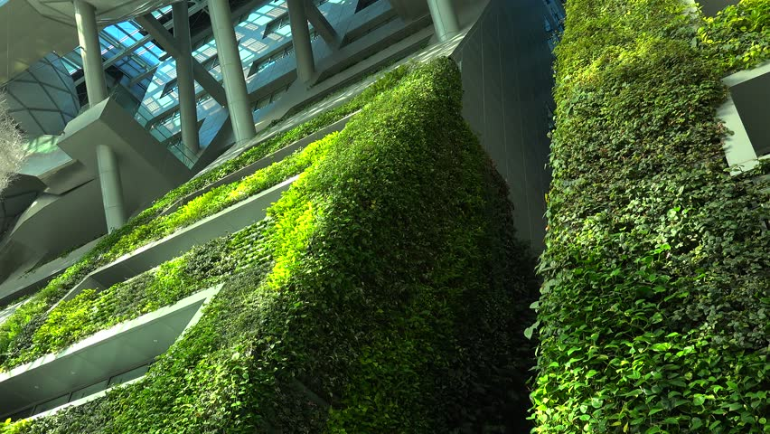 SEOUL, - NOVEMBER 01: Lush green wall in the Seoul City Hall (Guinness World Record as the largest vertical garden). November 01, 2015 in Seoul, South Korea
