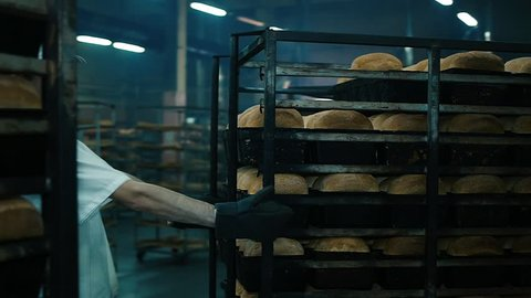 man puts the bread in the oven - the production of bread. baker factory flour buns fresh bread  bread bakery food factory production with fresh products, flour, dough, bread