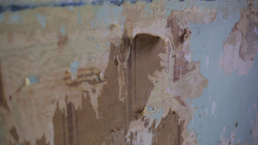 Removing Old Wallpaper   HD Stock Video Clip