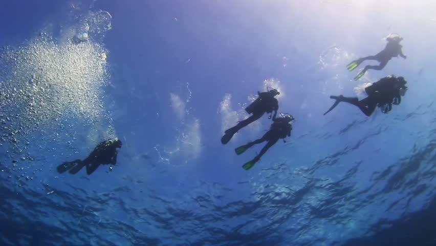 Rainbow Divers | Rainbow Divers Vietnam