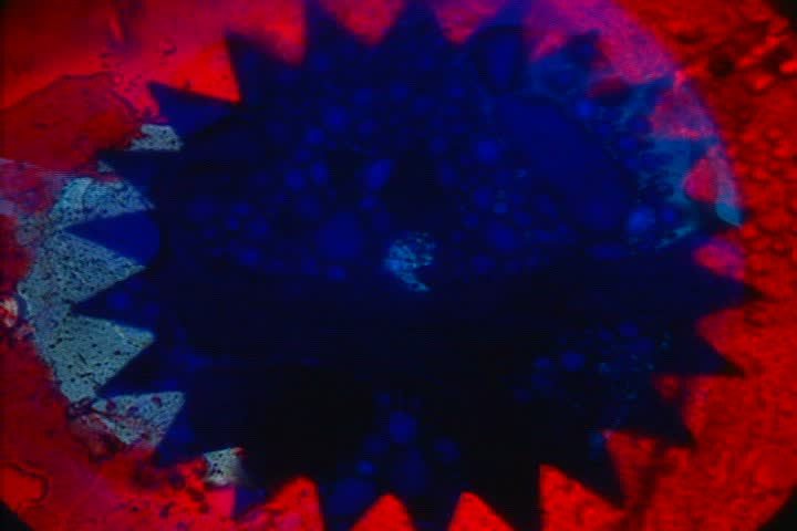 Jagged red and blue liquid with bubbles | Shutterstock HD Video #1399786
