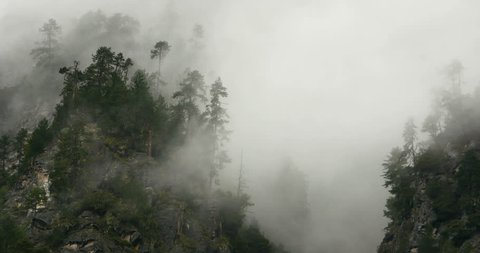 4k time lapse of mountain mist rising in the morning,fog pine trees,such as wonderland.Bomi County in tibet,the largest precipitation area in China. gh2_09933_4k