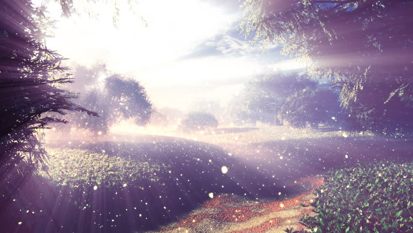 Amazing Natural Wonderland wth Fireflies and Lightrays in the Sunset Sunrise 3D Animation with cinematic camera motion