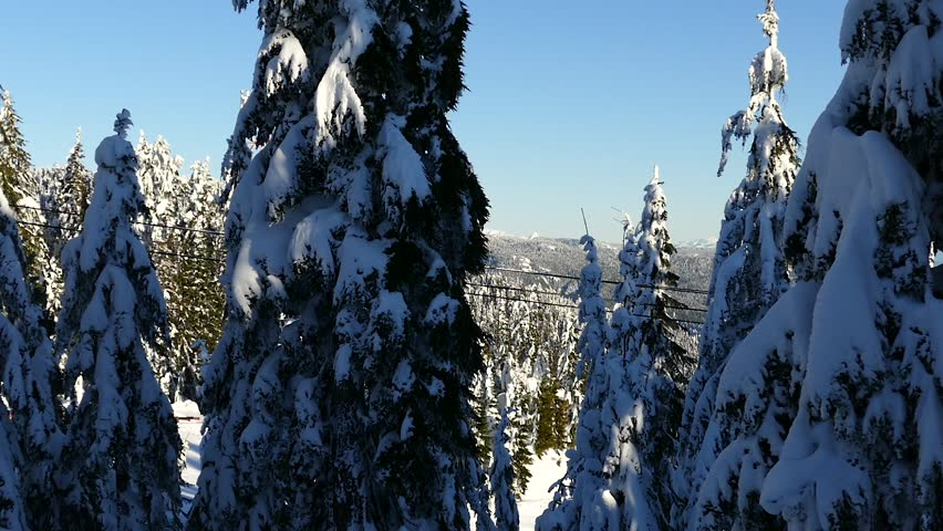 Alpine Skiing Resort - Grouse Mountain - Vancouver - British Columbia - West Canada - North America - 01 - Snow, Trees, Lift, People | Shutterstock HD Video #14163896