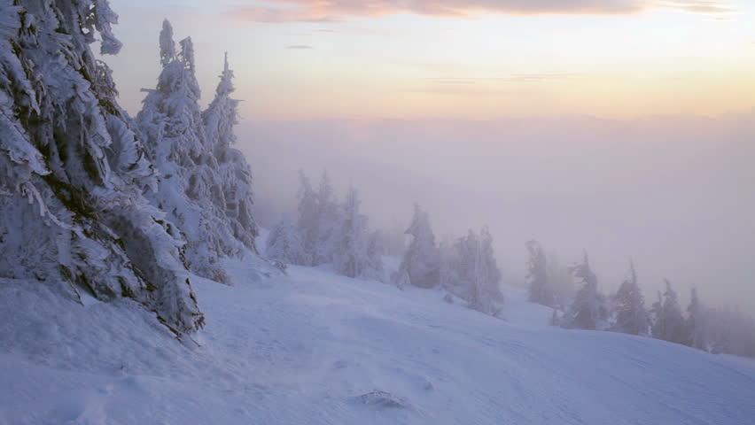 Sunrise in winter Carpathian mountains, Dragobrat, Ukraine. HD   Shutterstock HD Video #14343754