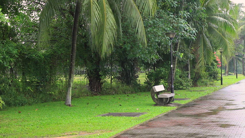Green tropical park with palms, grass and benches, beautiful pathways during rainy season in the Singapore, southeastern Asia. | Shutterstock HD Video #14522944