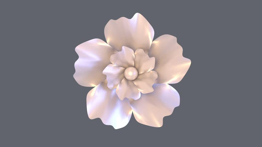 Elegant 3D computer graphic white flower petals opening time lapse . Alpha matte included for transparent background.