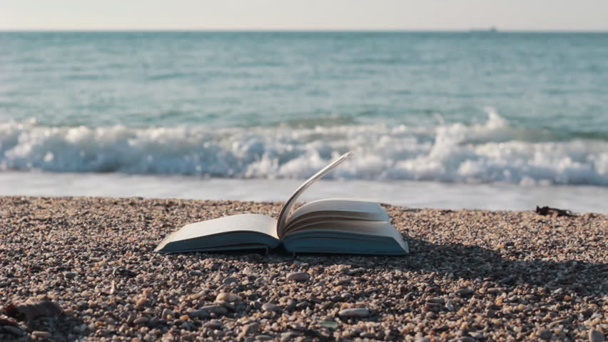 Image result for beach book