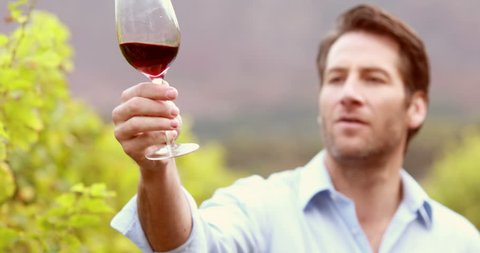 Portrait of a winegrower looking and smelling wine in the field