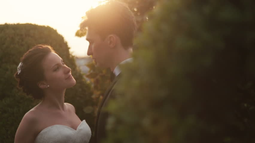 Wedding couple hold hands in Elysian Fields. Sunset on background | Shutterstock HD Video #15031666