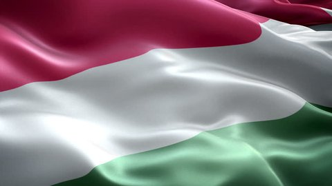 Hungary national flag. (New surge effect)