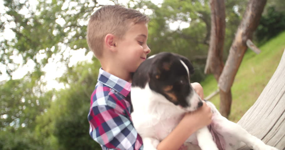 Loving Child stroking and hugging his pet animal friend, a mischievous looking crossbreed puppy dog with black and white fur.