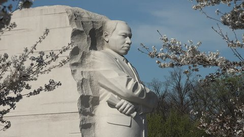 WASHINGTON, DC - MARCH 2016: Martin Luther King Memorial stands among swaying  cherry tree branches.  The MLK Memorial attracts hordes of tourists when Cherry Blossoms are blooming.