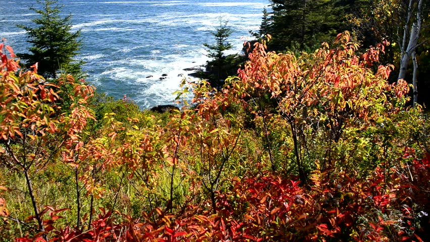 Header of Acadia National Park