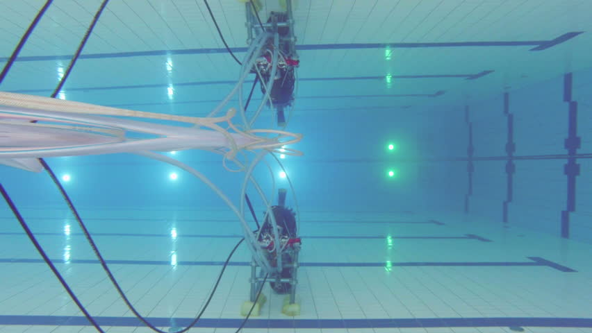 Underwater Picture Of The Lanes Of A Swimming Pool Sport Concept