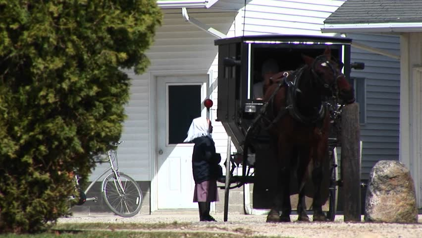 An Amish boy and girl prepare to travel via their horse and buggy.