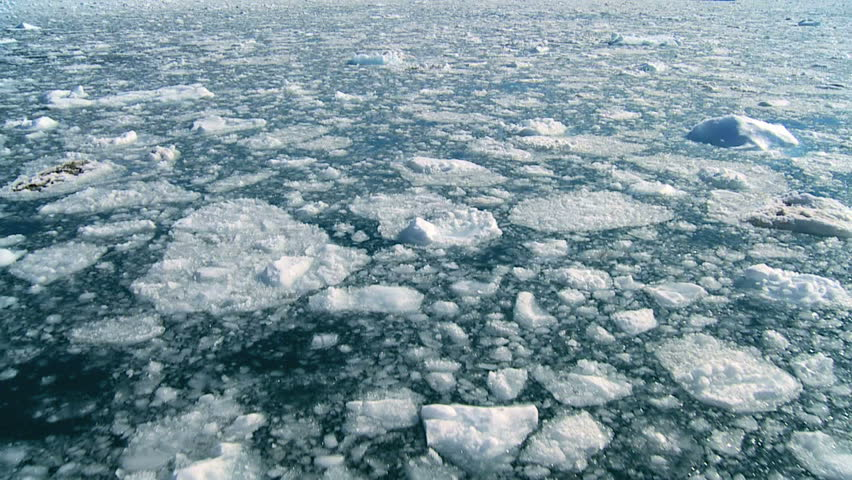Drifting Arctic Ice Floes