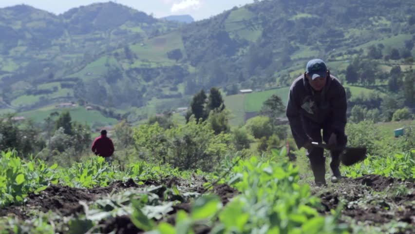 BOYACÁ, COLOMBIA, CIRCA 2014:Farmer plowing the earth on background mountains