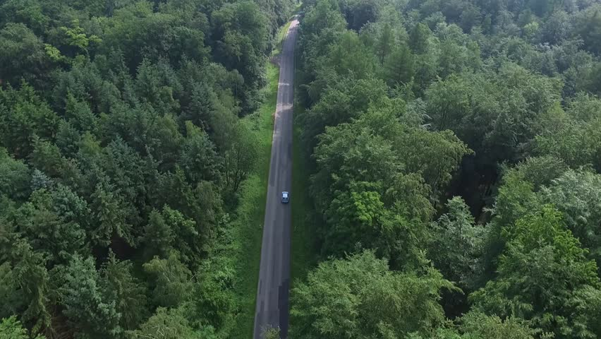 Aerial Drone flight over a country road in the North European Forests  | Shutterstock HD Video #16988803