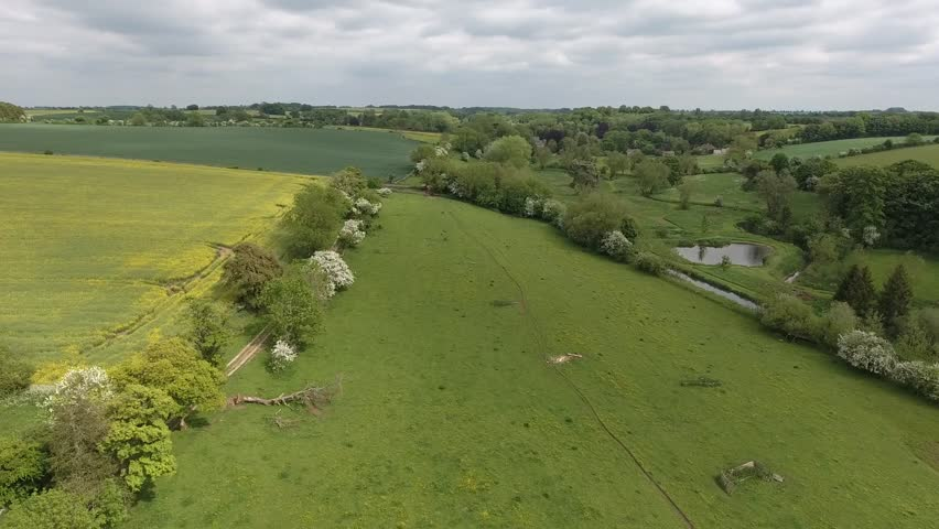 Aerial view of rural English countryside with yellow flowering rapeseed farm field, springtime green meadow, stream and small ponds