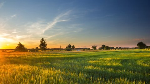 4k timelapse of beautiful summer green fields under sunset sky. 4096x2304