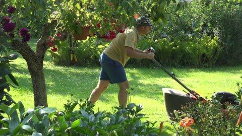 Man mowing garden lawn with mower machine in yard. 4K