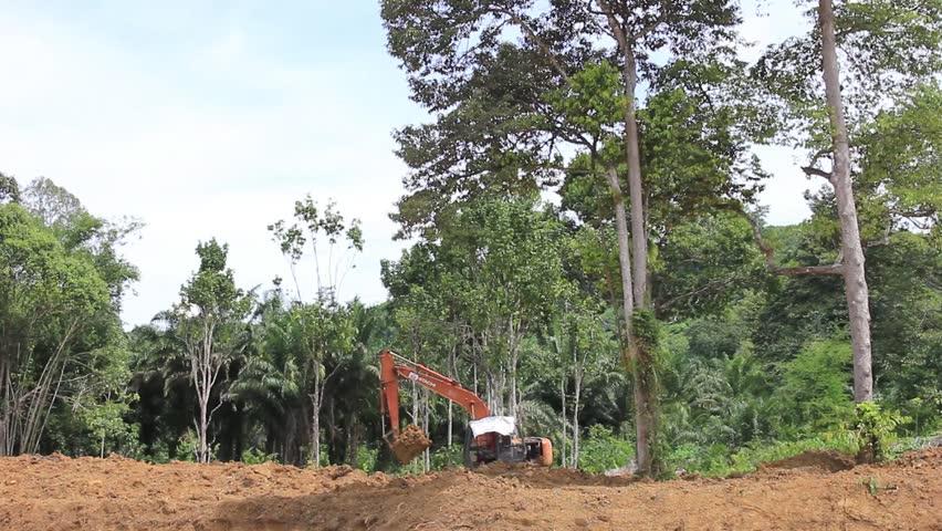 RANAU, MALAYSIA - 14 JUNE 2016: Deforestation: Excavator destroying Borno rainforest to make way for palm oil plantations.