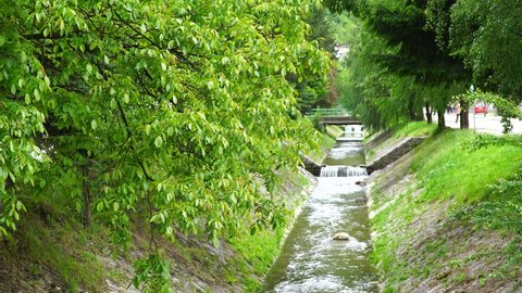 Scene of a patch of greenery around a river flow through Majdanpek, a small city in Serbia.