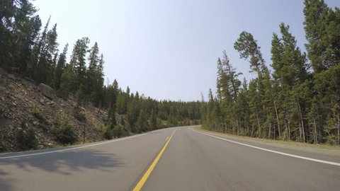 Car driving through alpine forest on Mount Evans-POV point of view.