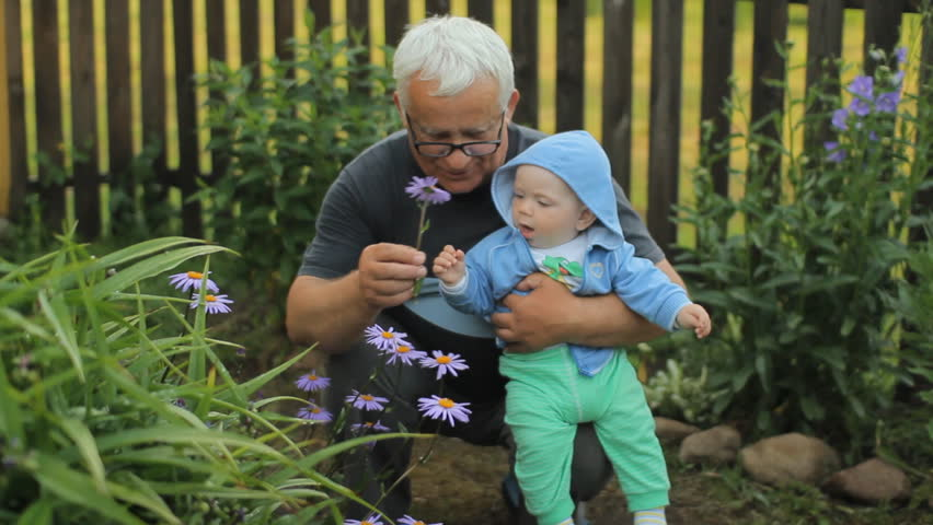 Grandfather giving a flower to his grandson. Beautiful baby smiling and touching plant