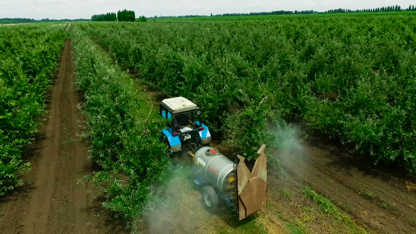 Aerial view of the Sprayer for Applying Fungicides in the Apple Orchard