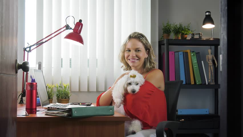 People Pets And Love For Animals Woman At Home In Office Room