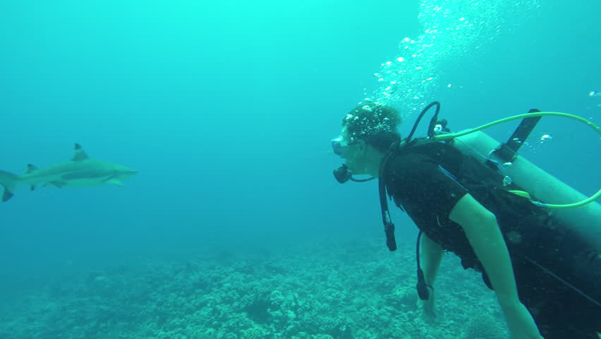 Slow Motion Half Underwater Young Diver Man Snorkeling And Swimming Underwater -4144