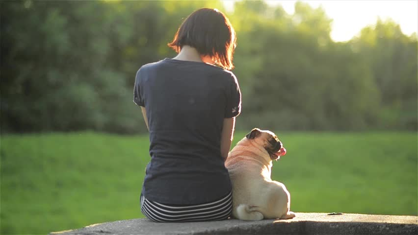 Happy young woman sit back with dog and looking at each other outdoors, girl stroking her mops in a park, warm sunny day | Shutterstock HD Video #18077407