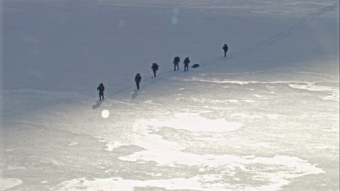 WS POV Explorers walking through snow / South Georgia Island(Antarctica - 38717)
