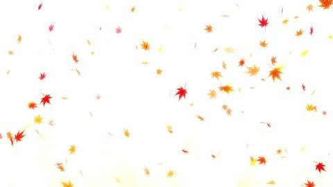 CG effects / background / wedding / loop