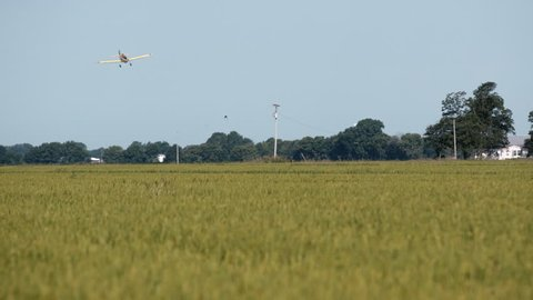 Crop duster in field in Mississippi Delta. Plane turns and starts second pass then swoops low and releases pesticide.