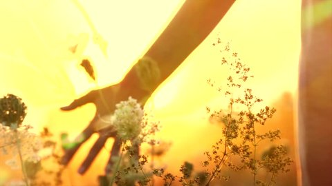 Beautiful young woman walking on field with wildflowers, enjoying nature outdoors. Touching flowers, Raising hands up. Over sunset sky Slow motion 240 fps. Full HD 1080p