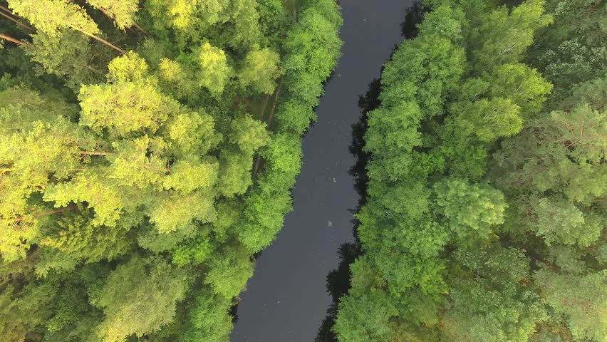 Flying on drone over forest lake with smooth surface | Shutterstock HD Video #19068316