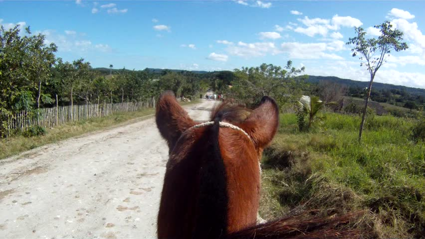 Point of view of riding a horse.