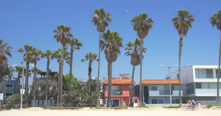 Palm Tree Lined Street by the Beach in Venice, California