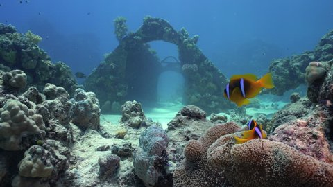 Cousteau's precontinent, wreck of underwater city - Shaab Rumi, Red Sea, Sudan