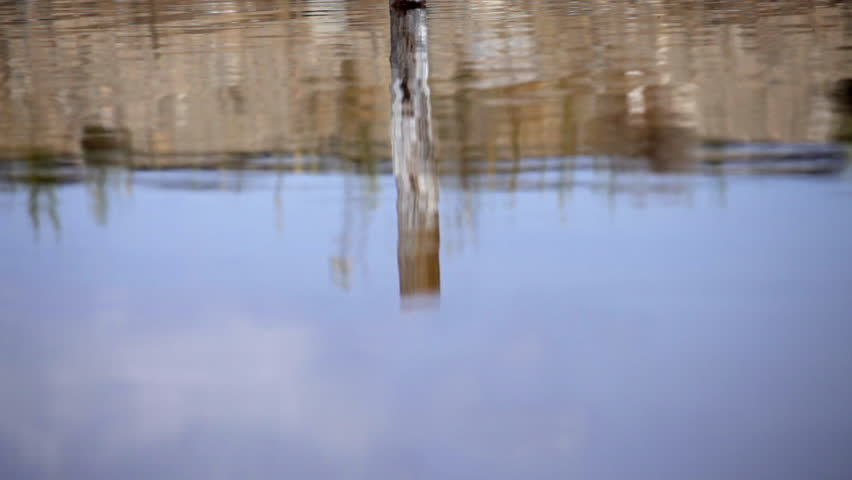 Reflection of a post in a rippling pond.