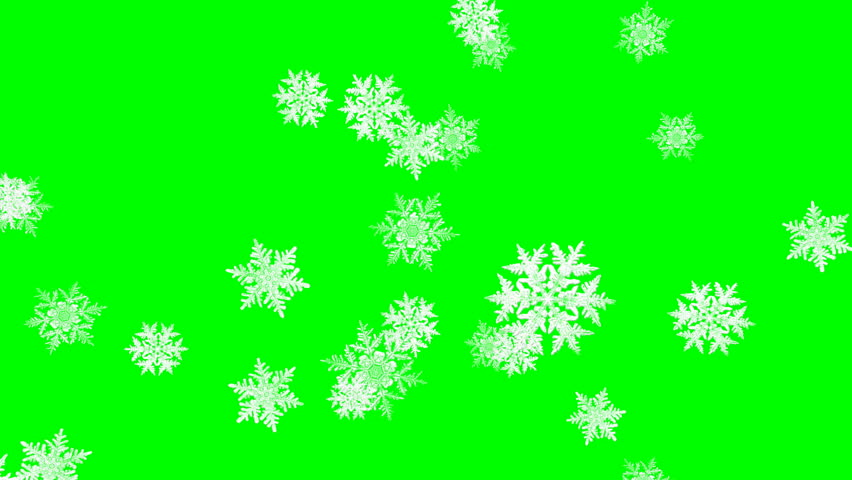 Falling snowflakes in winter  ?? loop, green screen
