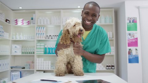 4K Portrait of smiling veterinarian with cute dog in clinic. Shot on RED Epic.