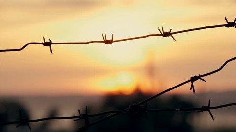 barbed wire prison sunset orange background